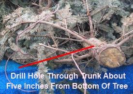 Make A Fishing Honey Hole Part 1
