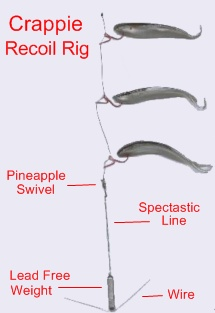 Recoil Rig - Secret Weapon Lures